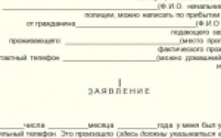 Заявление о краже телефона в Полицию: образец, наказание, статья УК РФ, срок