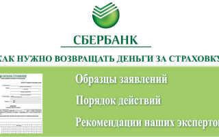 Образец заявления на возврат страховки по кредиту в Сбербанке