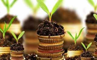 Земельный налог 2020 для юридических лиц и срок его уплаты