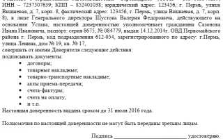 Образец доверенности на право подписи документов за директора ООО