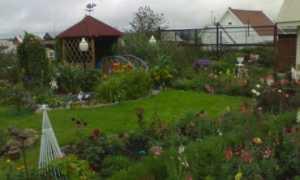 Можно ли строить дом на землях сельхозназначения для садоводства?